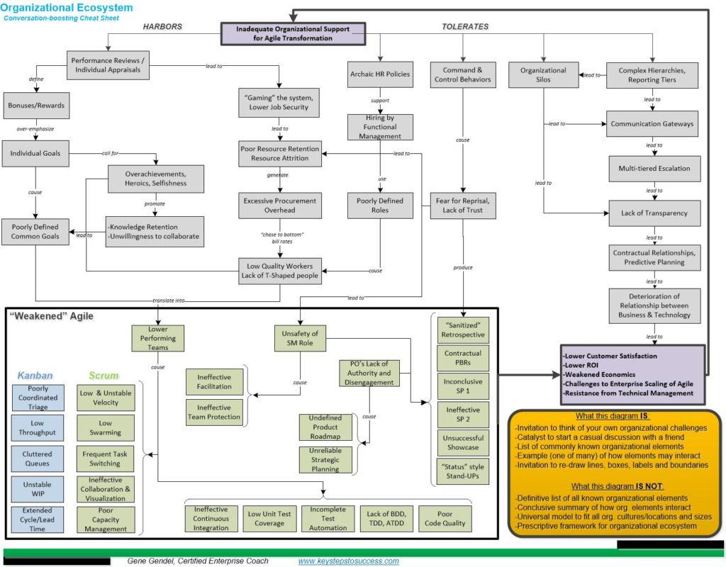 Ecostystem_Organization